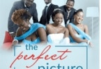 DOWNLOAD The Perfect Picture   Nollywood Movie