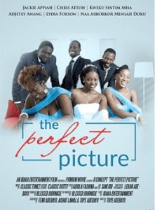 DOWNLOAD The Perfect Picture | Nollywood Movie