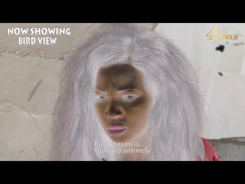 Bird View Latest Yoruba Movie 2021